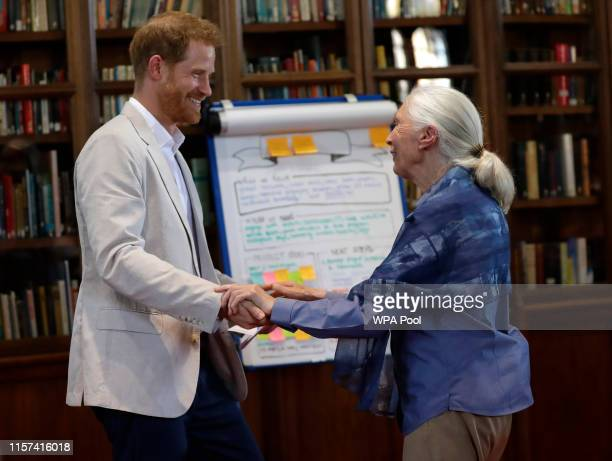 Prince Harry, Duke of Sussex attends Dr. Jane Goodall's Roots & Shoots Global Leadership Meeting at Windsor Castle on July 23, 2019 in Windsor,...