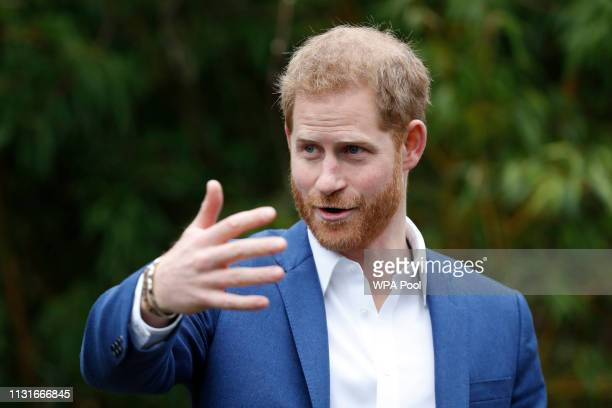 Prince Harry Duke of Sussex gestures as he speaks before planting a tree from the Woodland Trust at St Vincent's Catholic Primary School at St...