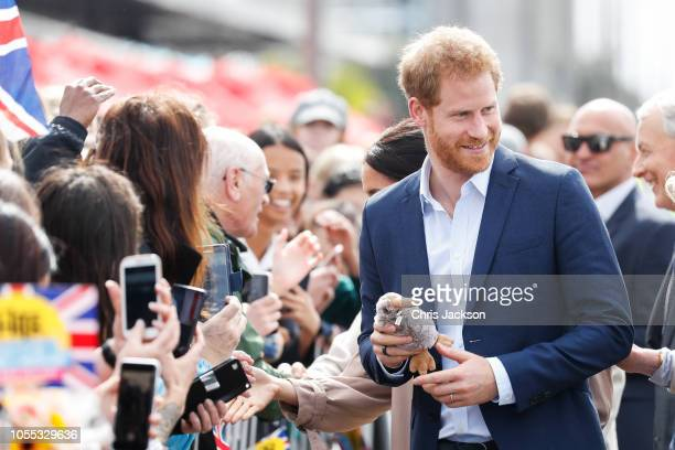 Prince Harry, Duke of Sussex greeting fans along the street during 'Walkabout' on October 30, 2018 in Auckland, New Zealand. The Duke and Duchess of...
