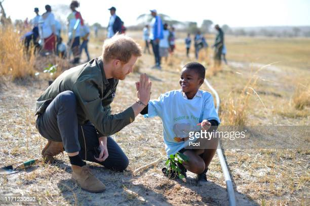 Prince Harry, Duke of Sussex helps local schoolchildren plant trees at the Chobe Tree Reserve in Botswana, on day four of their tour of Africa on...