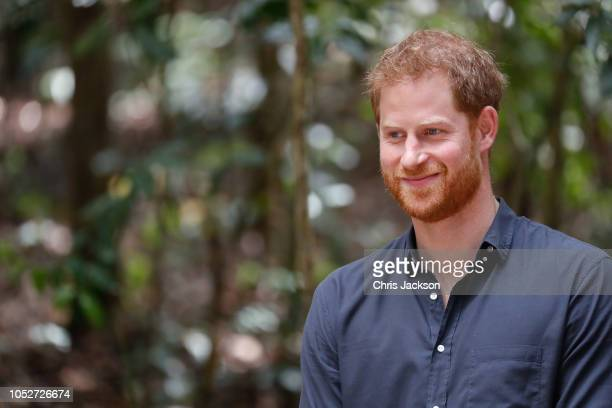 Prince Harry Duke of Sussex portrait smiling under the Queens Commonwealth Canopy on October 22 2018 in Fraser Island Australia The Duke and Duchess...