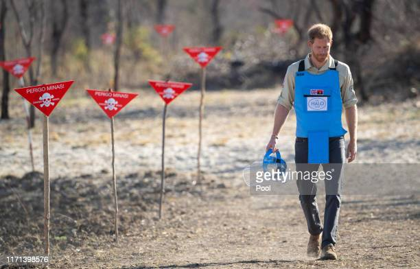 Prince Harry, Duke of Sussex visits a minefield in Dirico, Angola, to see the work of landmine clearance charity the Halo Trust, on day five of the...