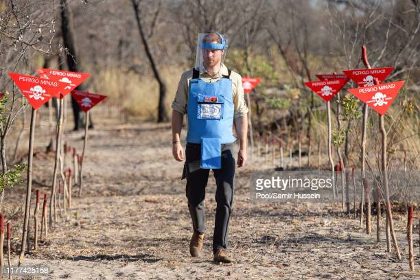 Prince Harry Duke of Sussex walks through a minefield during a visit to see the work of landmine clearance charity the Halo Trust on day five of the...