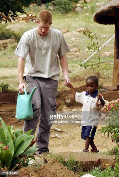 Prince Harry planting a tree with young orphan Mutsu Potsane at the Mants'ase Children's Home for children orphaned by and suffering from Aids near...