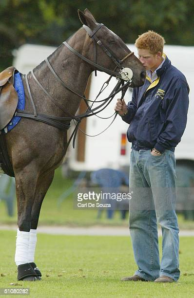 Prince Harry rubs noses with a horse at Cirencester Polo Club Gloucestershire on July 18 2004