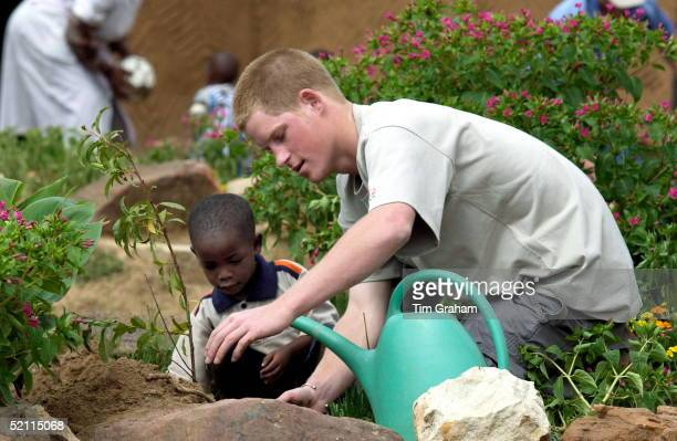 Prince Harry Shows His Caring Nature While He Works In The Garden With Mutsu At The Mants'ase Children's Home Which Provides A Loving Home For...