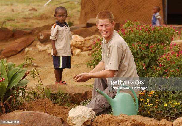 Prince Harry the younger son of Britain's Prince Charles with young orphan Mutsu Potsane after they planted a peach tree together at the Mants'ase...
