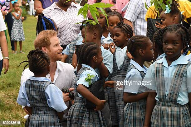 Prince Harry unveils the first of four dedications towards the Queen's Commonwealth Canopy during Arbour Day Fair at Queen Victoria Park Botanical...