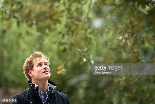 Prince Harry visits the Sentebale 'Hope In Vunerability' Garden during the annual Chelsea Flower show at Royal Hospital Chelsea on May 18 2015 in...