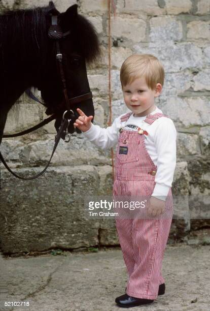 Prince Harry With His Pony Smokey At His Home Highgrove House