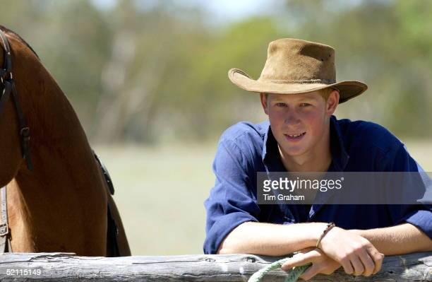 Prince Harry Works As A Jackaroo Cowboy Mustering Charolais And Shorthorn Bulls On A Cattle Property In The Outback In Australia Owned By Annie And...