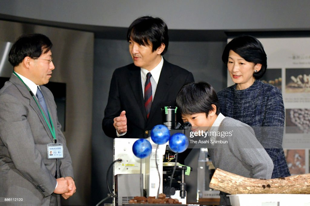 Prince Hisahito, his parents Prince Akishino and Princess Kiko of Akishino visit Minakata Kumagusu Museum on December 5, 2017 in Shirahama, Wakayama, Japan.