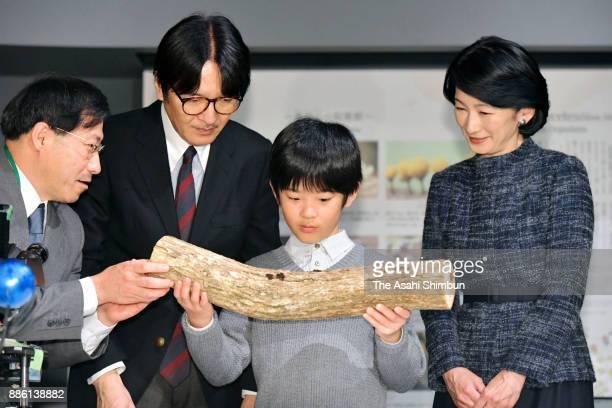 Prince Hisahito his parents Prince Akishino and Princess Kiko of Akishino visit Minakata Kumagusu Museum on December 5 2017 in Shirahama Wakayama...