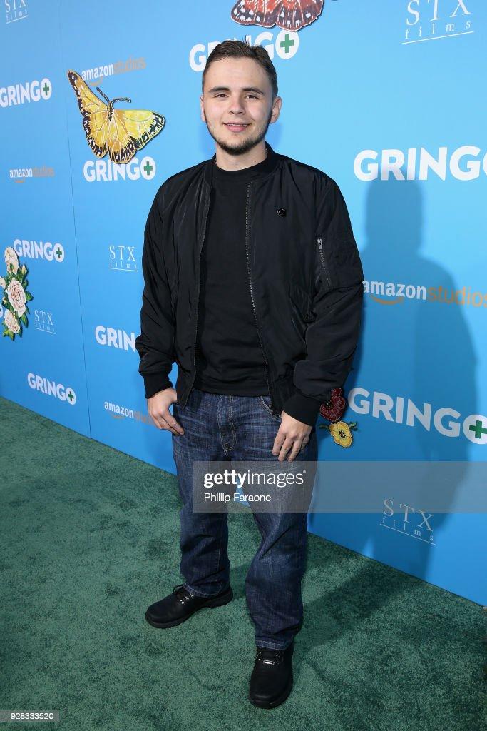 "Premiere Of Amazon Studios And STX Films' ""Gringo"" - Red Carpet : News Photo"