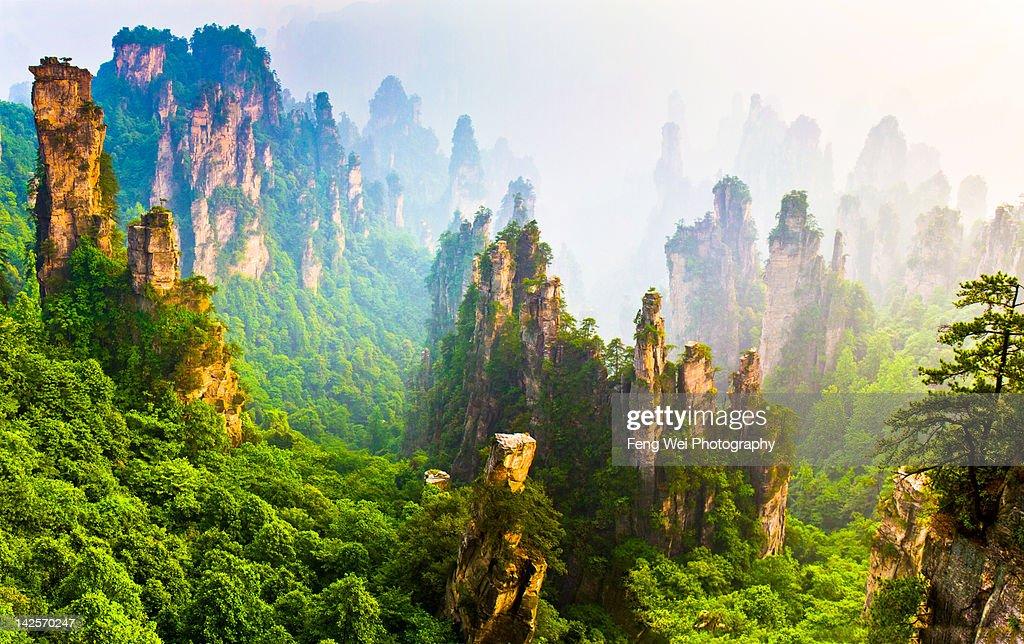 Prince mountain, Zhangjiajie China : Stock Photo