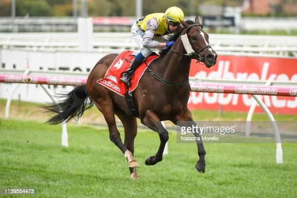 Prince Of Sussex ridden by Michael Dee wins the Ladbrokes Showdown at Caulfield Racecourse on April 27 2019 in Caulfield Australia