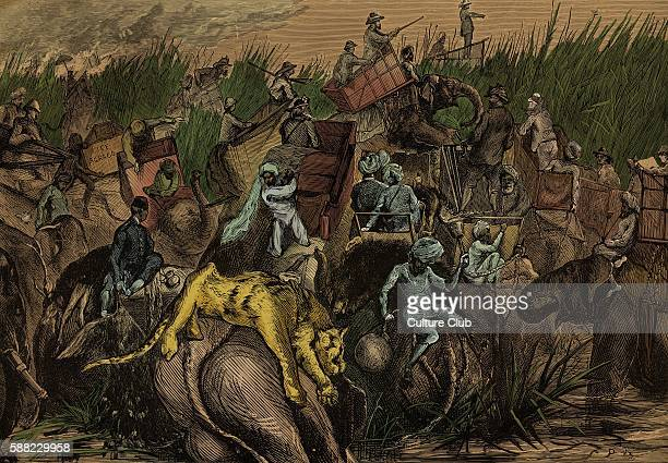 Prince of Wales hunting in India elephants crossing a nullah During state visit to India 1875 76 From drawing by SPHall Future Edward VII King of the...