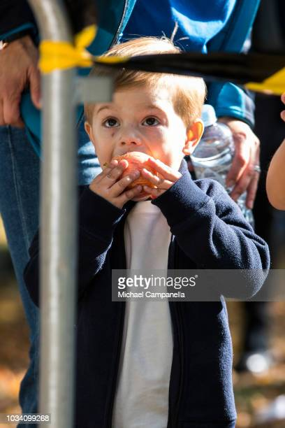 Prince Oscar of Sweden eats an apple during the Prince Daniels Race and Pep Day at Haga Park on September 16 2018 in Stockholm Sweden Prince Daniels...