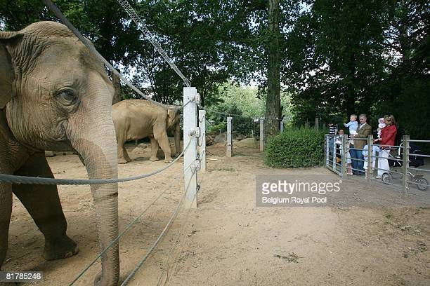 Prince Philippe and Princess Mathilde of Belgium pose for Belgian Royal Family Holiday Photographs at the Antwerp Zoo on June 30, 2008 in Brussels,...