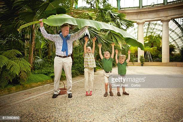 Prince Philippe with his three children, Elisabeth, Gabriel, and Emmanuel playing with a banana tree leaf in the winter garden section of the royal...
