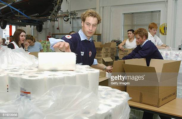 Prince William and Prince Harry pack Tsunami aid items bound for the Maldives at a Red Cross depot on January 7 2005 in Warmley England