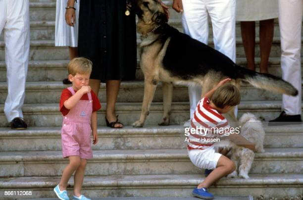 Prince William and Prince Harry play with a dog during a holiday in Majorca on August 10 1987 in Palma Majorca