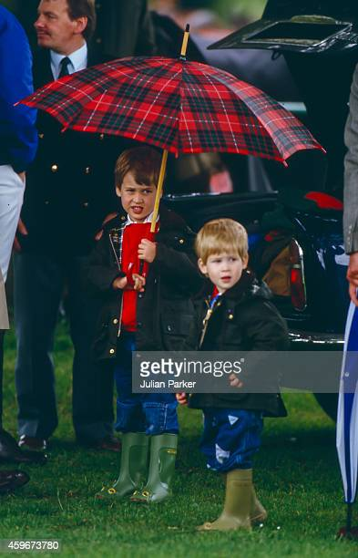 Prince William and Prince Harry watch Prince Charles play Polo at Cirencester Polo Club on June 6 1987 in Windsor United Kingdom