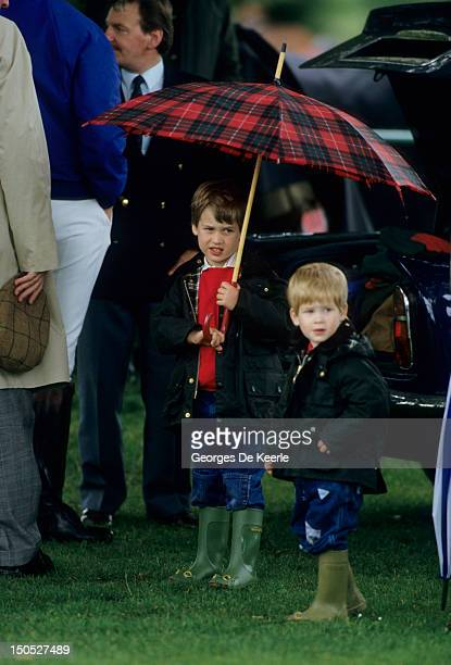 Prince William and Prince Harry with an umbrella at polo in Cirencester