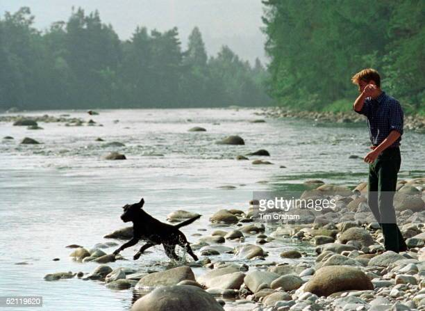 Prince William At Polvier By The River Dee On The Balmoral Castle Estate Throwing Stones For Widgeon His Black Labrador Dog