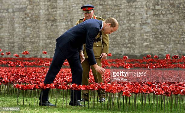 Prince William Duke of Cambridge adds a ceramic poppy as he visit The Tower of London's 'Blood Swept Lands and Seas of Red' ceramic poppy...
