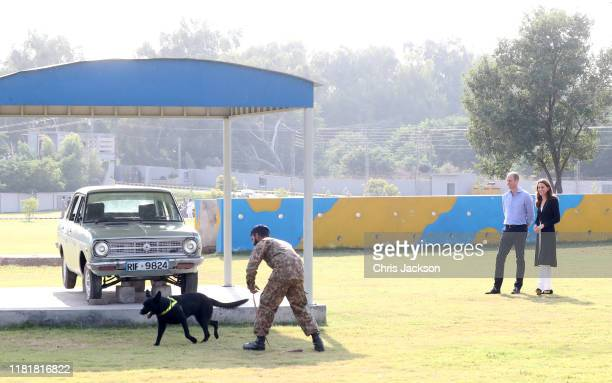 Prince William Duke of Cambridge and Catherine Duchess of Cambridge watch an agility training course as they visit an Army Canine Centre where the UK...