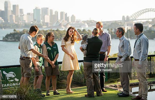 Prince William Duke of Cambridge and Catherine Duchess of Cambridge meet a Koala at Taronga Zoo on April 20 2014 in Sydney Australia The Duke and...