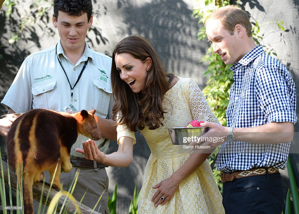 Prince William, Duke of Cambridge and Catherine, Duchess of Cambridge feed a tree kangaroo as they isit the Bilby Enclosure at Taronga Zoo on April 20, 2014 in Sydney, Australia. The Duke and Duchess of Cambridge are on a three-week tour of Australia and New Zealand, the first official trip overseas with their son, Prince George of Cambridge.