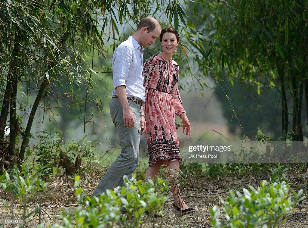 Prince William, Duke of Cambridge and Catherine, Duchess of Cambridge visit Pan Bari Village at Kaziranga National Park on April 13, 2016 in Guwahati, India.