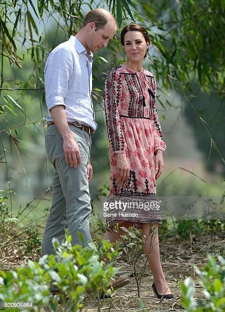 Prince William, Duke of Cambridge and Catherine, Duchess of Cambridge visit Pan Bari Village and walk through a tea garden at Kaziranga National Park...