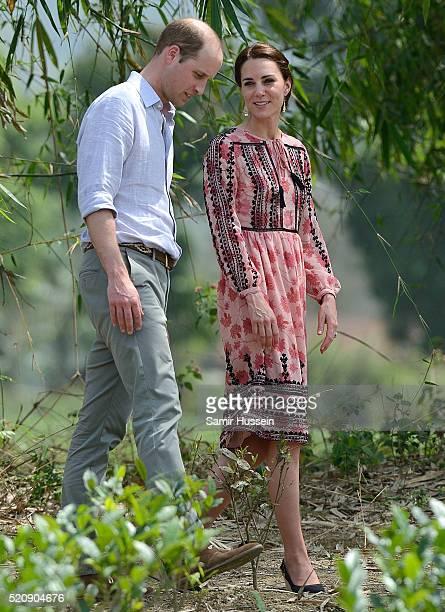 Prince William Duke of Cambridge and Catherine Duchess of Cambridge visit Pan Bari Village and walk through a tea garden at Kaziranga National Park...