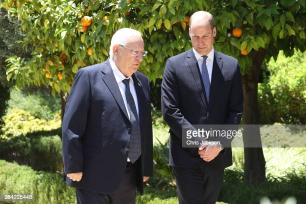 Prince William Duke of Cambridge attends an audience with Israeli President Reuven Rivlin during his official tour of Jordan Israel and the Occupied...