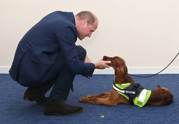 GBR: The Duke Of Cambridge Marks Emergency Services Day In Belfast