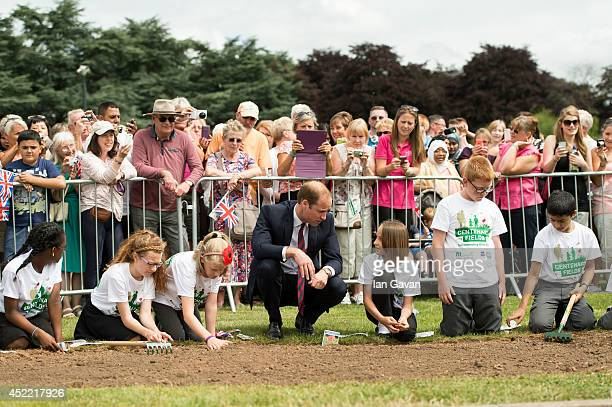 Prince William Duke of Cambridge plants poppy seeds during an official visit to the Coventry War Memorial Park on July 16 2014 in Coventry England...