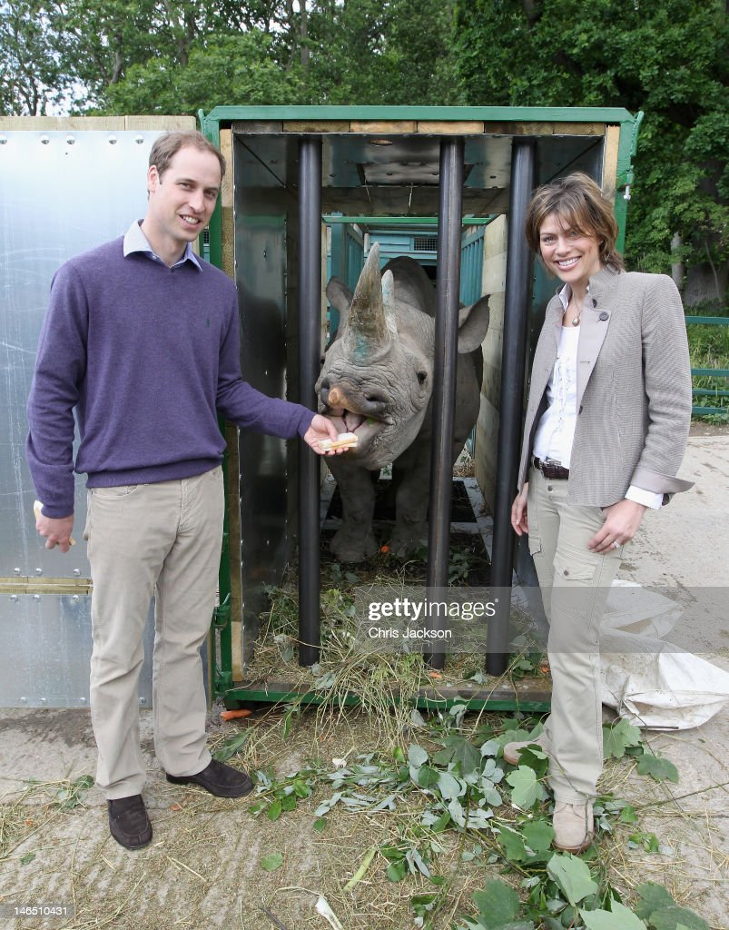 Rhino Translocation Project