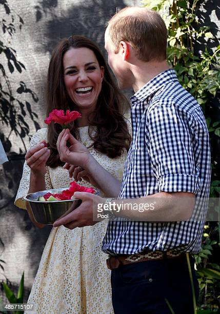 Prince William, Duke of Cambridge presents Catherine, Duchess of Cambridge with a flower in the tree kangaroo enclosure at Taronga Zoo on April 20,...