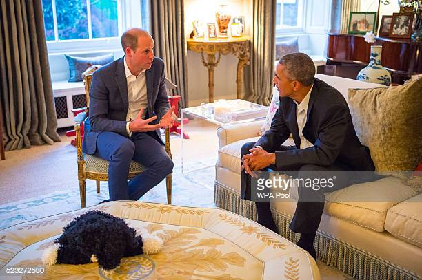 Prince William, Duke of Cambridge speaks with US President Barack Obama in the Drawing Room of Apartment 1A Kensington Palace as they attend a dinner...