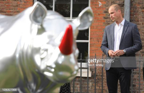Prince William Duke of Cambridge views a rhino painted by artist Patrick Hughes as he attends 'The Tusk Rhino Trail' celebration at Kensington Palace...