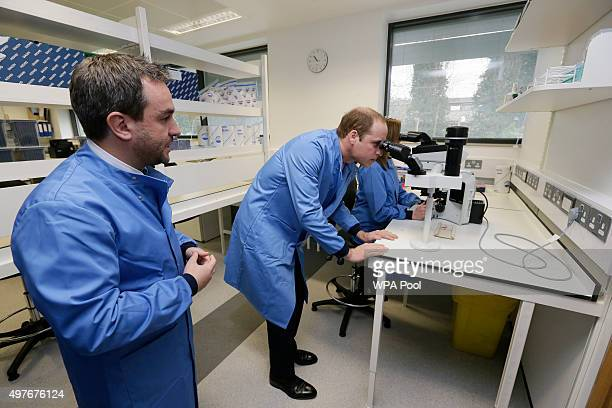 Prince William Duke of Cambridge views a sample through a microscope watched by head of molecular diagnostics Dr David Gonzalez de Castro during a...