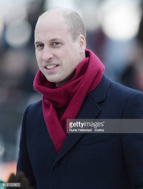 Prince William Duke of Cambridge visits the Princess Ingrid Alexandra Sculpture Park on day 3 of the Duke and Duchess of Cambridge's visit to Sweden...