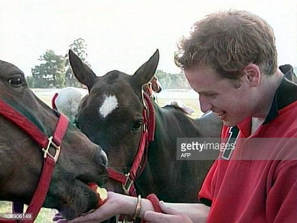 Prince William feeds an apple to polo ponies in a framegrab from an ITN pooled video released 20 June to mark Prince William's 21st birthday 22 June...