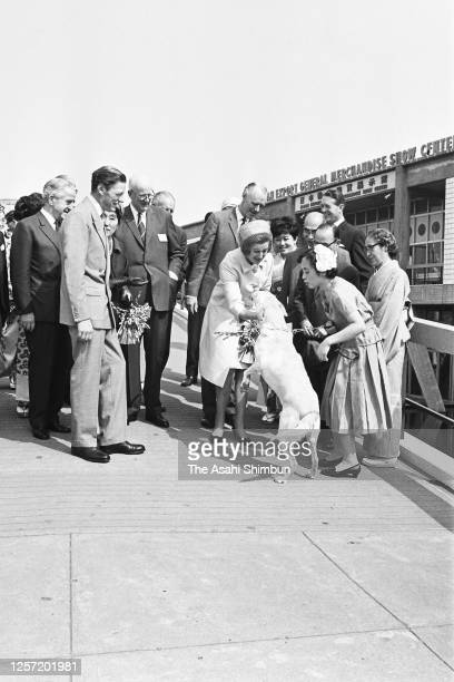Princess Alexandra and her husband Angus Ogilvy meet a guide dog at the venue of the British Exhibition on September 28, 1965 in Tokyo, Japan.