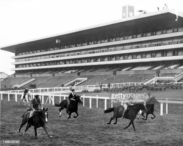 Princess Alice, Duchess of Gloucester, Princess Alexandra of Kent and friends take part in a 5-furlong Royal sprint past the new grandstand at Ascot,...