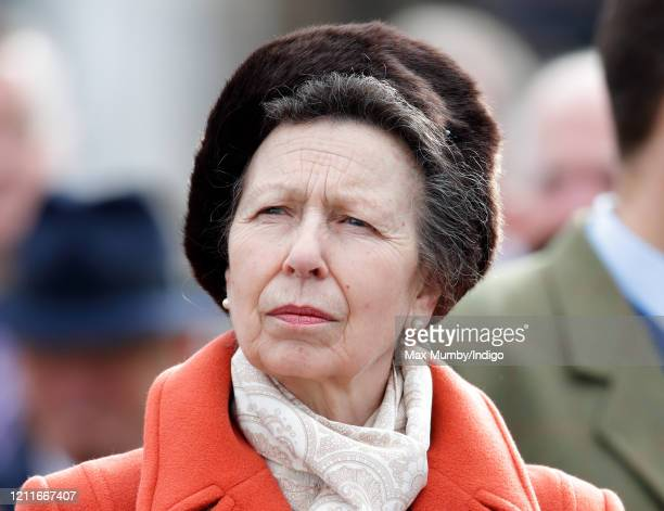 Princess Anne, Princess Royal attends day 1 'Champion Day' of the Cheltenham Festival 2020 at Cheltenham Racecourse on March 10, 2020 in Cheltenham,...