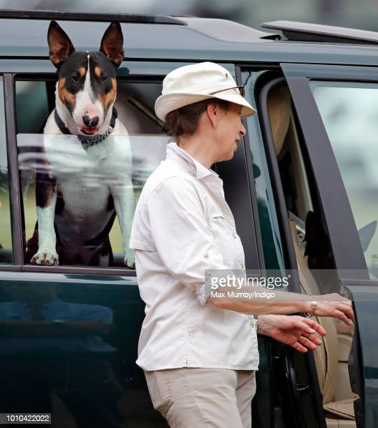 Princess Anne Princess Royal attends day 1 of The Festival of British Eventing at Gatcombe Park on August 3 2018 in Stroud England